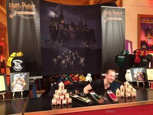 Je suis allée voir Harry Potter à l'Ecole des Sorciers en ciné-concert