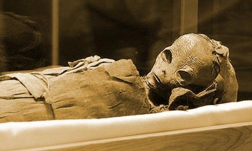 Découverte d'une momie alien en Égypte