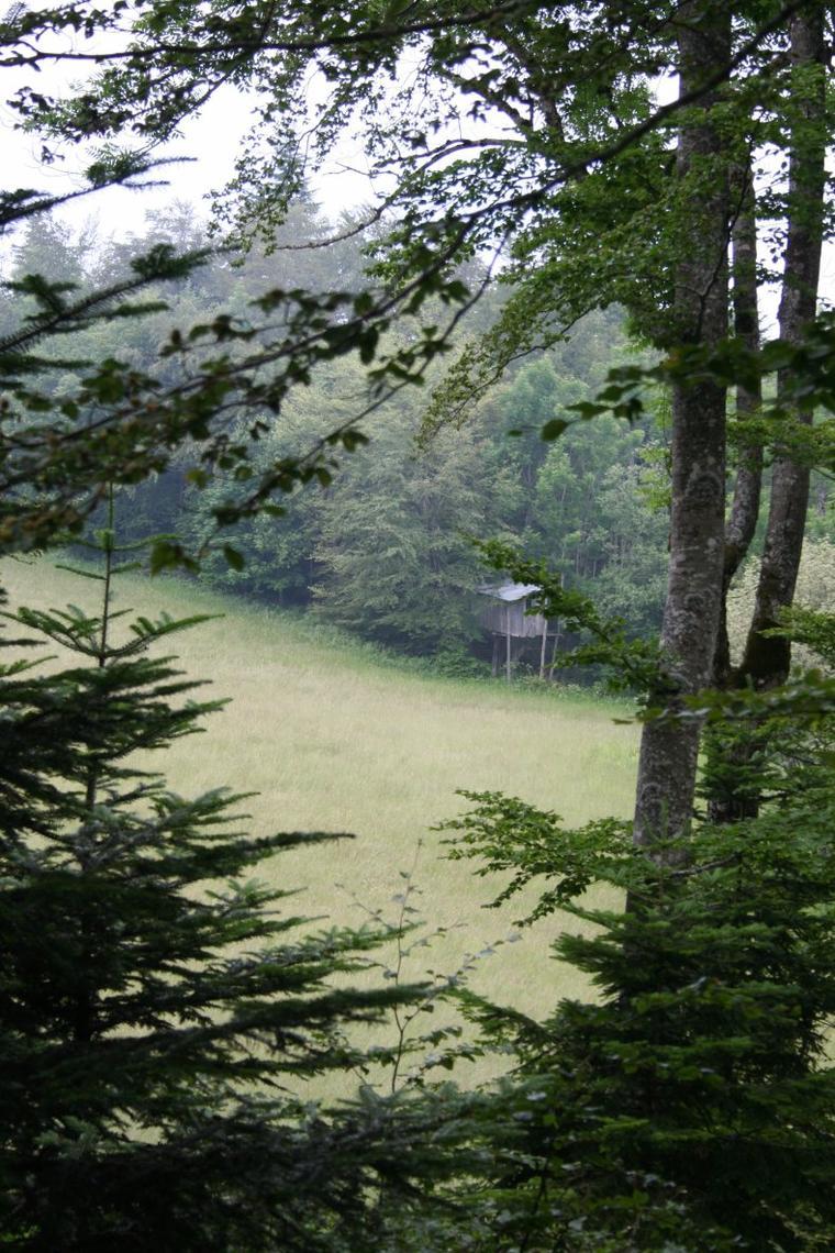 Col de l'Echarasson - Pélendré - Drôme