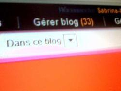Merci au bloggeurs et bloggeuse ♥