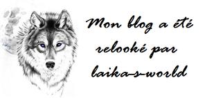Habillages / Logos / Bannières