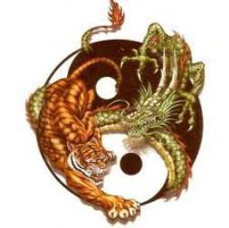 tigre et dragon ying-yong