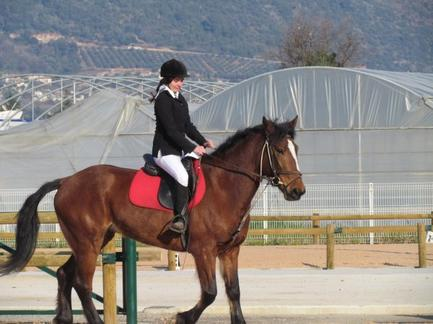Passage galop 4 Ilargi (dressage) et Queen of Nice (saut)