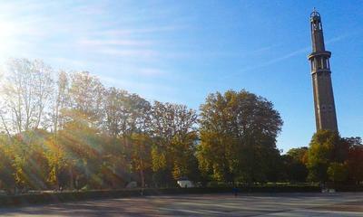 Voici que la saison décline - #poème #automne