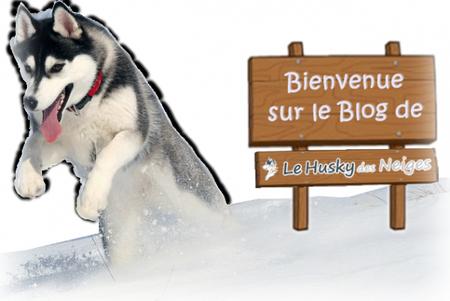 Bienvenue sur le blog Le Husky Des Neiges