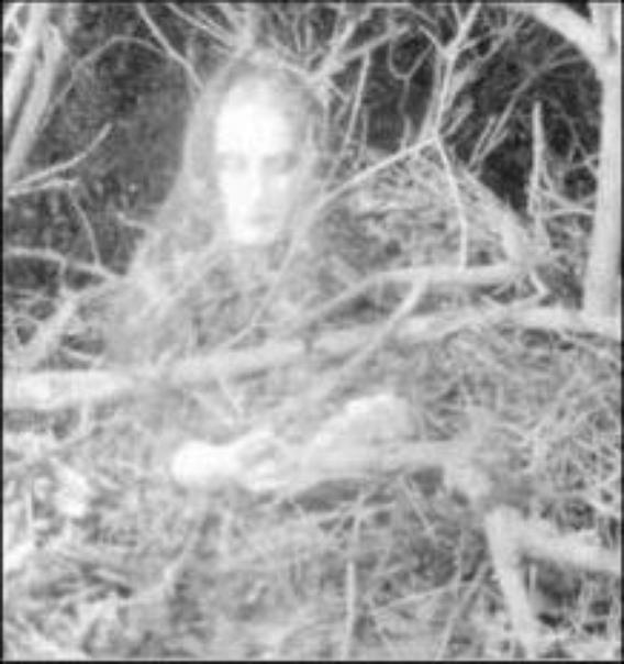un fantome fais son apparition