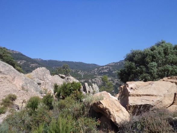 2013, le 4 juillet.  Du col de Bacinu au Lion de Roccapina.