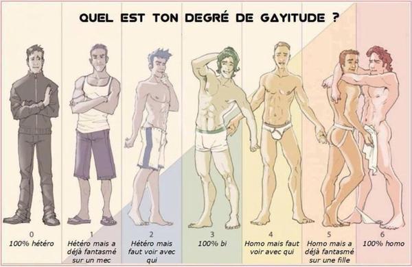 Quel est ton degré de GAYTITUDE ?
