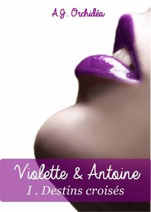 Destins Croisés - Tome 1 : Violette & Antoine, A.J. Orchidéa