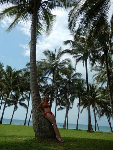 #21 - Déménagement & Bintan