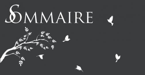 Presentation et sommaire (: