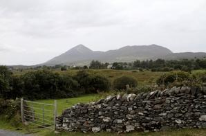 A song for Ireland... (11)