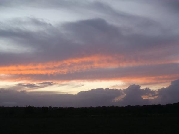 Une balade dans la savane qui se transforme en sortie Cayenne-Land, 11-05-14 (suite...)