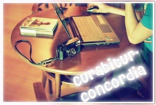 Bienvenu sur Curabitur-concordia