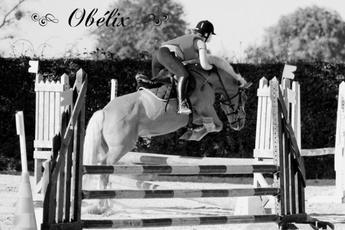 Obélix