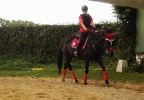 La clé de mon bonheur et de mon sourir, ma plus grande fierté, rien que lui mon petit cheval noir. Loock Again ♥