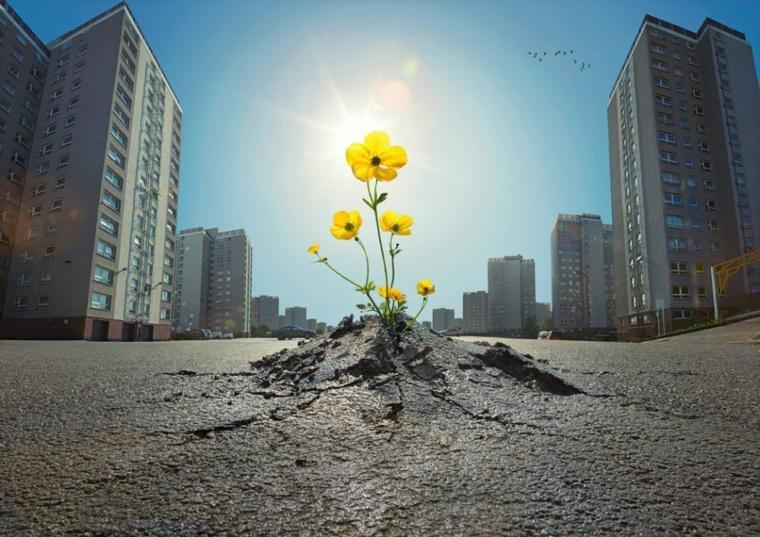 Influencer le monde positivement est un choix personnel ; Avant d'être un choix sociétal .