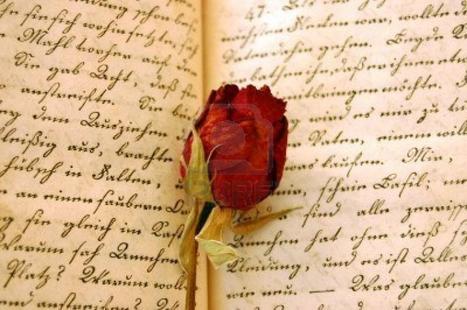 Certains amours meurent avant même d'avoir eu la chance de briller...