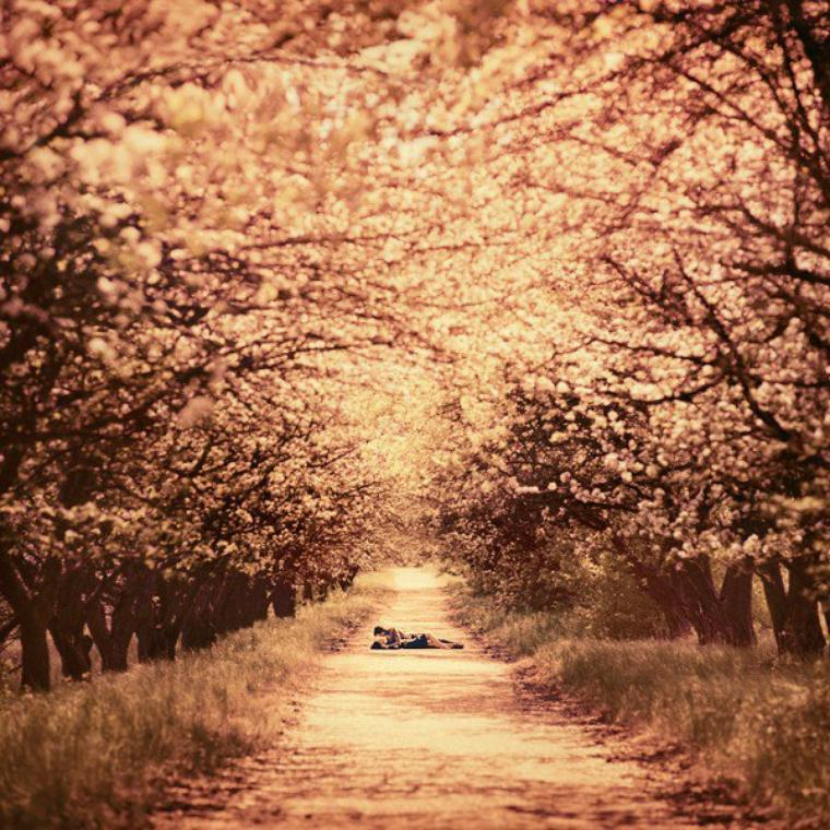 La plus grande barrière à l'amour est le passé. Les souvenirs de moments vécus avec d'autres, d'amours échoués. Seulement quand on aime à nouveau, quand on aime réellement, il faut savoir prendre sur soi et apprendre à chasser ces souvenirs définitivement. Parvenir à tourner la page. On ne se construit pas une belle histoire sur les fragments du passé.
