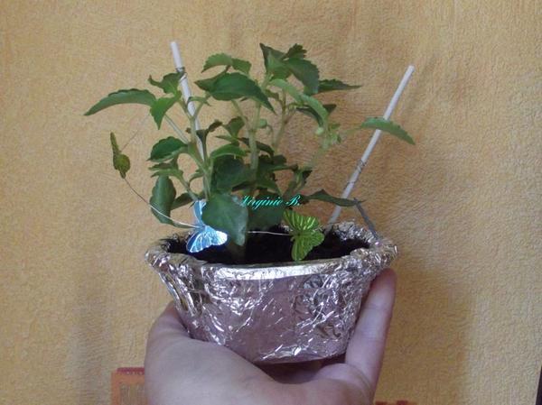 Cadeau de l'école de la Fête des Maman de mon Petit Garçon