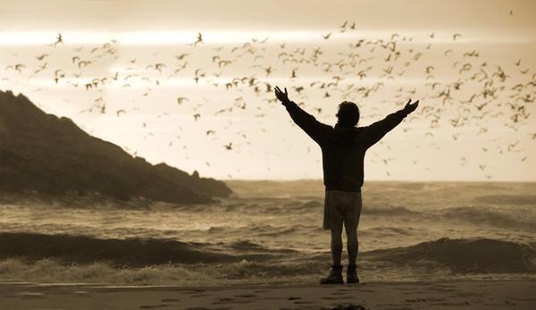 Deux ans à parcourir le globe. Sans téléphone, sans compagnie, sans animaux, sans cigarettes. La liberté suprême. Un extrémiste, un voyageur esthète, dont le seul domicile est la route. Et maintenant, après deux années chaotiques, c'est le moment de l'aventure ultime la plus extraordinaire. Le combat capital pour tuer l'être factice terré au plus profond, et mener à son terme la révolution spirituelle. Pour ne plus se laisser contaminer pas la civilisation, il fuit, et il marche seul, pour revenir à l'état sauvage.