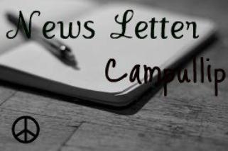 News Letter ! :)
