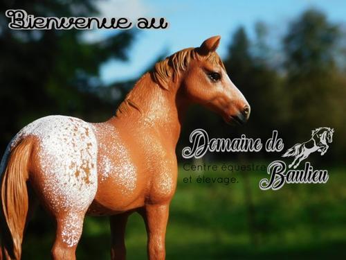 Bienvenue au domaine de Baulieu ~