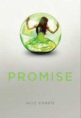Promise d' Ally Condie