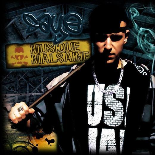 Musique Malsaine (Street Album)