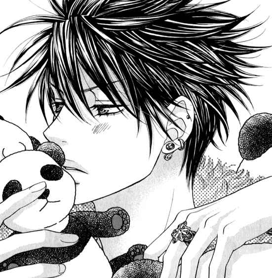 Manga —  S.P.Y
