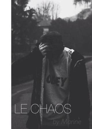 ♦339. LeChaos