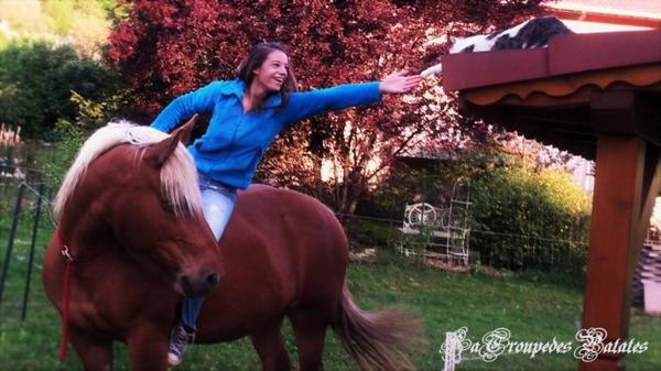 Catégorie : Equin ~ Pseudo : Azia-Pouliche -  Titre : Azia-Pouliche, Carnet d'une propriétaire.