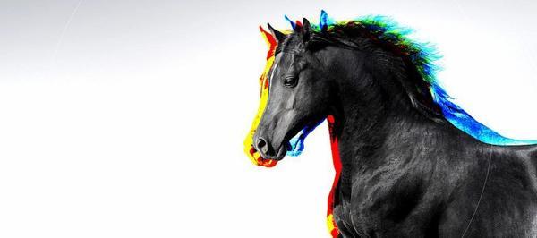 Catégorie : Equin ~ Pseudo & Titre : Univers-Equin
