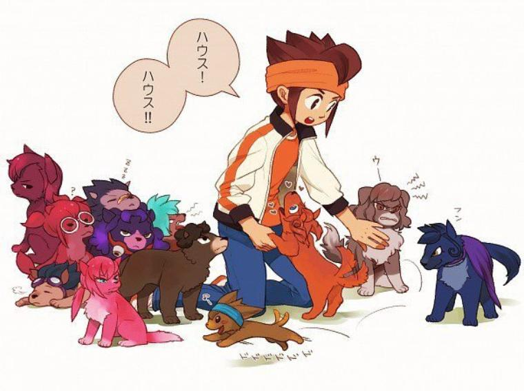Inazuma version animal