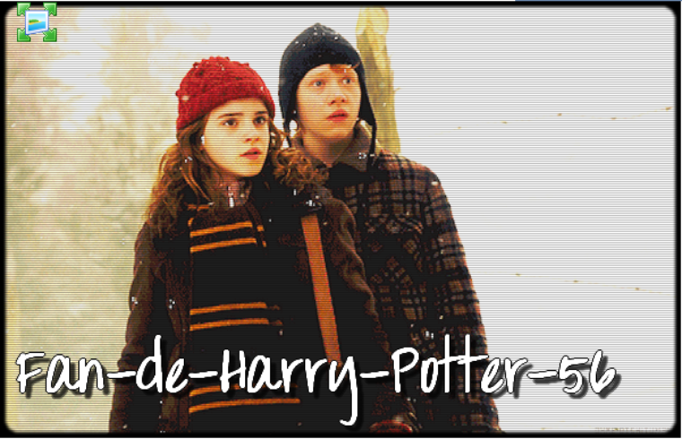 Baccalauréat Harry Potter