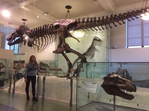 Musée d'Histoires Naturelles