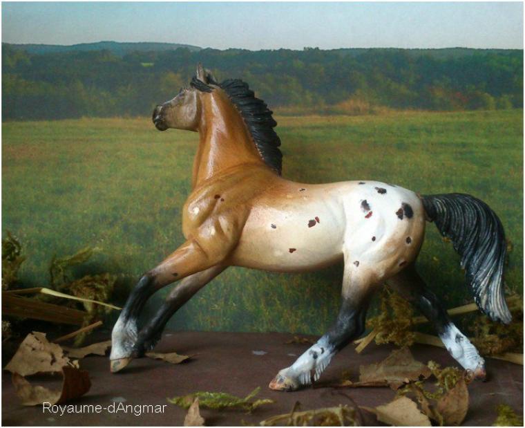 Custom Safari Mustang