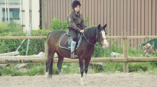 Théorie galop 3 αηd Pratique Galop 3 .