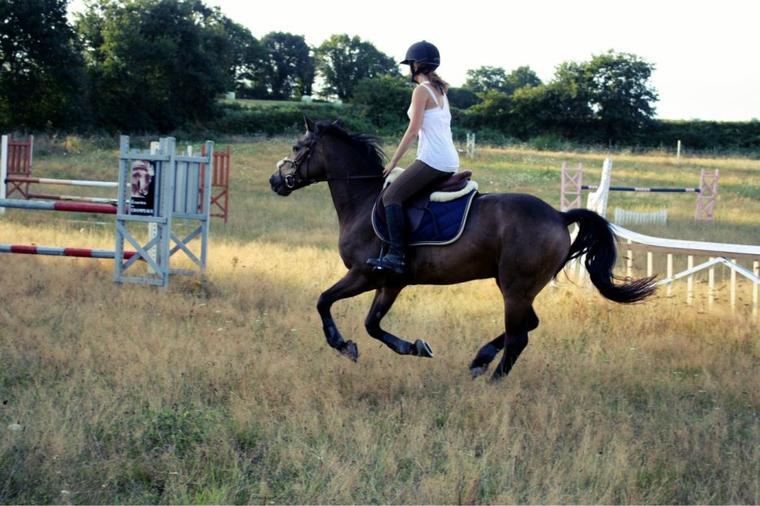 Un poney au top !