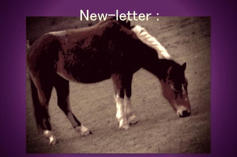 New-Letter ♥♥