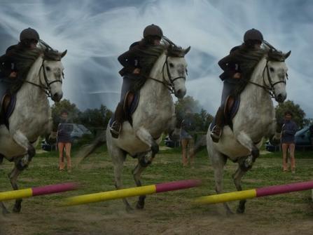 » Le cheval porte son cavalier avec vigueur et rapidité. Mais c'est le cavalier qui conduit le cheval. Le talent conduit l'artiste à de hauts sommets avec vigueur et rapidité. Mais c'est l'artiste qui maîtrise son talent. ❤