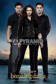 Pyramid International dévoile de nouveaux posters breaking dawn part 2.