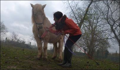 Le respect du cheval c'est la fondation de la liberté ♥