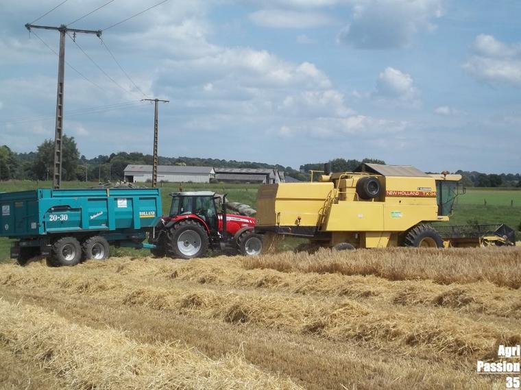 Moisson d'orge 2011 : New-Holland Tx 34