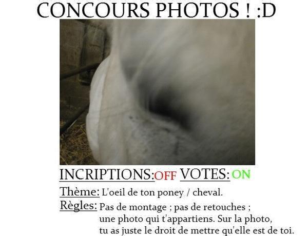 Concours photos ! :D