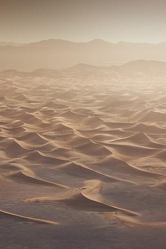 Guerrière du désert