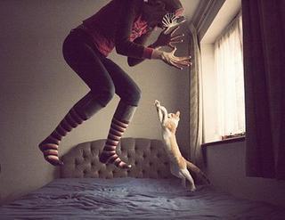 « Les chiens ont des maîtres, les chats ont des serviteurs. »