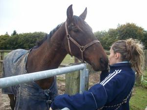 Les chevaux qui mon marquaient