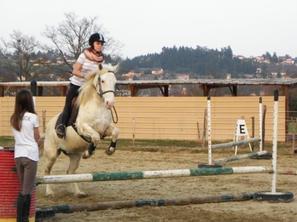 Nos amour(e)s de poneys/ponettes ! ♥