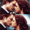 Flightless Bird, American Mouth
